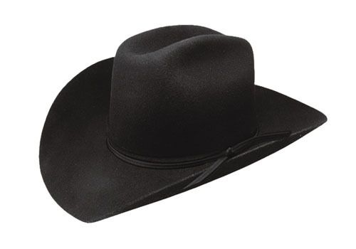 f4da60d9a Resistol RODEO JR Youth Felt Cowboy Hat