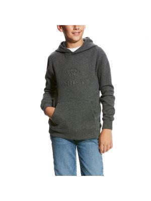Ariat Kid's Logo Hoodie 10023602